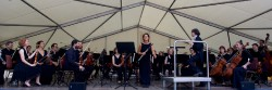 3.7. Flora Sinfonie Orchester_3