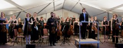 3.7. Flora Sinfonie Orchester_5